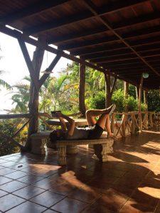 Hostel Plinio Terrace, Manuel Antonio, Costa Rica
